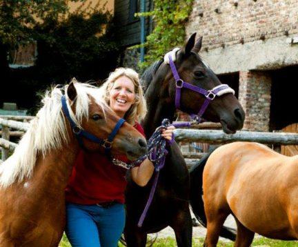 Petra Burgmer Pferde